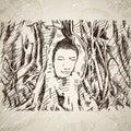Buddha head in tree roots in Ayutthaya