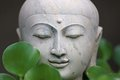 Buddha head white stone on a black background with vegetation Royalty Free Stock Images