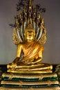 Buddha and Naga Royalty Free Stock Photo