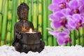 Buddha is sitting in ZEN garden Royalty Free Stock Photo