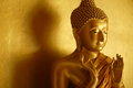 Buddha statue in the first teaching gesture golden and his shadow dhammajak mutra Royalty Free Stock Photos