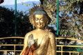 Buddha statue in nepal buddhist golden monkey temple kathmandu Stock Photography
