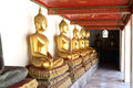 Buddha statue row of in temple in thailand Stock Image