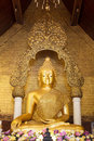 Buddha statue the in thailand temple Stock Photography