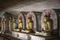 Buddha statues at dambulla rock temple sri lanka image of in a cave the ancient Royalty Free Stock Photography