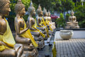 Buddha Statues In Seema Malaka...