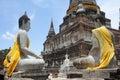 The Buddha status of wat yaichaimongkon Royalty Free Stock Image