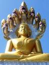 Buddha in Tha Ton / Thailand.