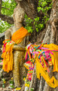 Buddha under the tree stand in maha sarakham thailand standing a along with worship with colorful fabrics Stock Photos
