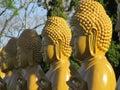 Golden Buddha Statues, Brazil Chen Tien Temple