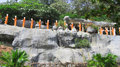 Buddhist Disciple statues at a temple in Sri Lanka Royalty Free Stock Photo