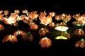 Buddhist Lotus Lantern