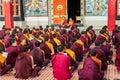 Buddhist monks kushalnagar india june th reading scripture in the monastery at kushalnagar india june th Stock Photography