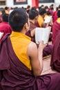 Buddhist monks kushalnagar india june th reading scripture in the monastery at kushalnagar india june th Royalty Free Stock Images