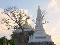 Buddhist pagoda in bangkok thailand Stock Photos