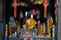 In Buddhist shrine  at banteay kdei temple, angkor, cambodia Royalty Free Stock Photo