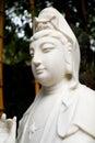 Buddhist statue of guanyin bodhisattva avalokitesvara bodhisattva goddess of mercy east asian traditional chinese or with classic Stock Images