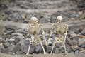 Buddy human skeleton on railway background Royalty Free Stock Photo