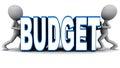 Budget shrink