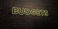 BUDGETS -Realistic Neon Sign on Brick Wall background - 3D rendered royalty free stock image Royalty Free Stock Photo