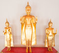 The bueatiful buddha sculptures at wat po on november in thailan thailand Stock Photo