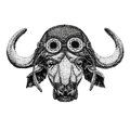 Buffalo, bull, ox wearing aviator hat Motorcycle hat with glasses for biker Illustration for motorcycle or aviator t