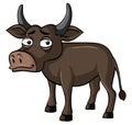 Buffalo with sad face