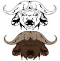 Buffalo vector Stock Photography