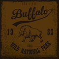 Buffalo vintage outdoor
