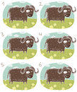 Buffalo visual game for children illustration is in eps mode task find two identical images match the pair answer no and Stock Images