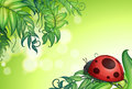 A bug above the green leaves illustration of Stock Photo