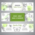Bugs insects hand drawn banner. Pest control concept. Entomology poster Cartoon illustration of pests and bug. Vector Royalty Free Stock Photo