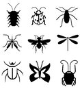 Bugs vector collection of different insects Stock Photography