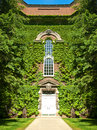 Building covered in ivy with and lush greenery Stock Photo
