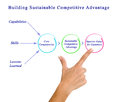 Building Sustainable Competitive Advantage Royalty Free Stock Photo