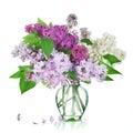 Buketten blommar lilan Arkivbilder