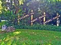 Bukit batok nature park entrance signpost at of singapore Royalty Free Stock Photography