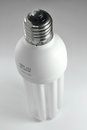 Bulb high quality daylight economic Royalty Free Stock Photo
