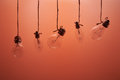 Bulbs hanging on laces on a red background Royalty Free Stock Photo