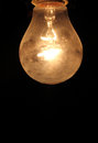 Bulbs - yellow light - Thomas Edison Royalty Free Stock Photo