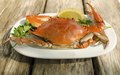 Bulgarian crab on white plate with lemon and parsley Royalty Free Stock Photos