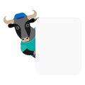 Bull banner illustration of a on a white background Royalty Free Stock Images