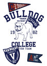 Bull dog college a vintage image fashion sport and more Stock Photo