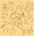 Bull, dog, dragon, horse, monkey, pig, rat, sheep, snake
