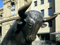 The bull in front of the frankfurt stock market simbolized uprising stocks Royalty Free Stock Photo