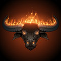 Bull head in fire Royalty Free Stock Photo