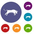 Bull icons set