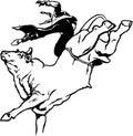 Bull Rider Illustration Royalty Free Stock Photo