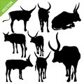Bull silhouettes vector Royalty Free Stock Photo
