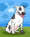 Bull terrier dog cartoon illustration Stock Photo